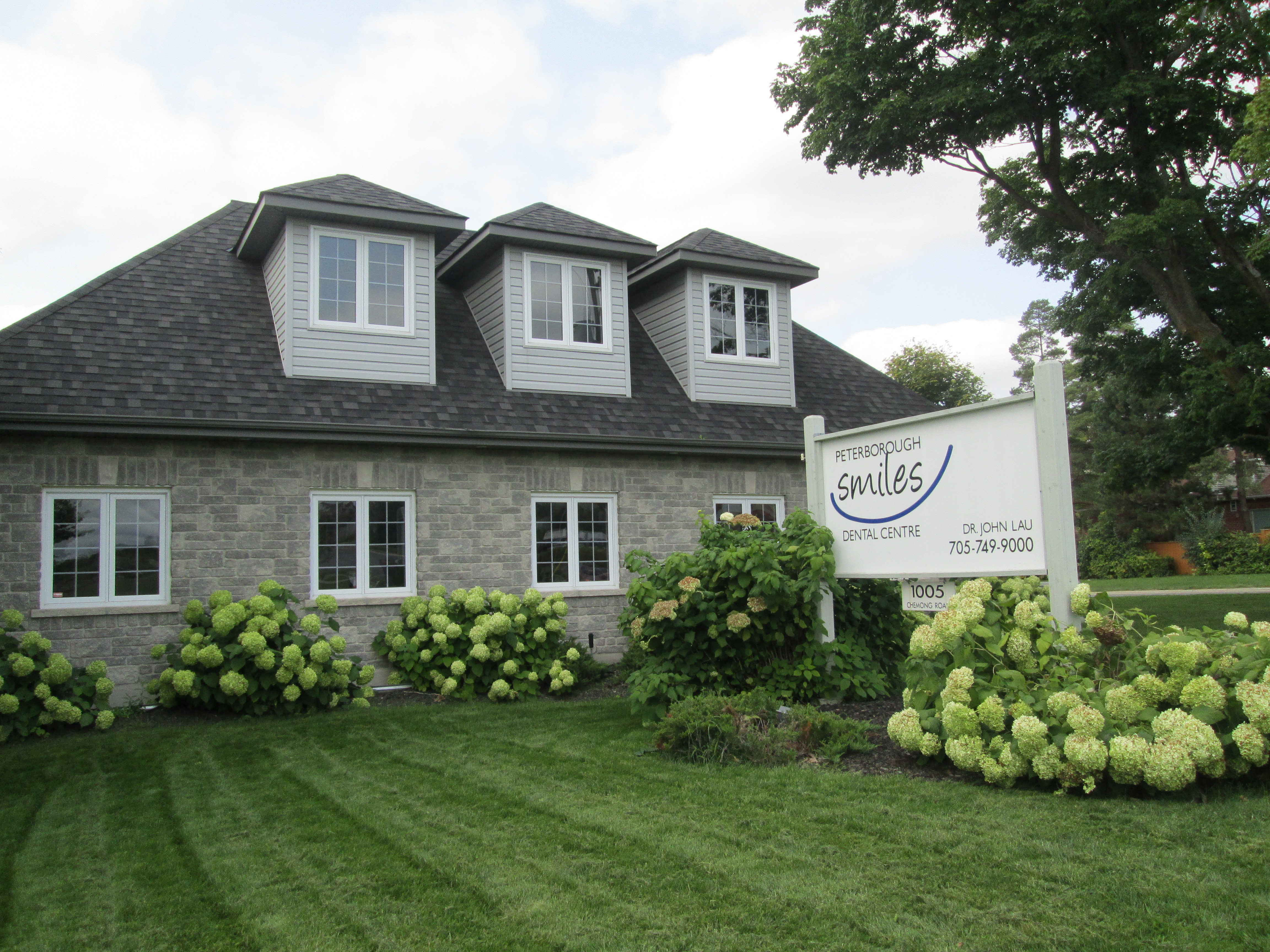 Peterborough Smiles Dental Centre exterior, with our hydrangeas in full bloom.